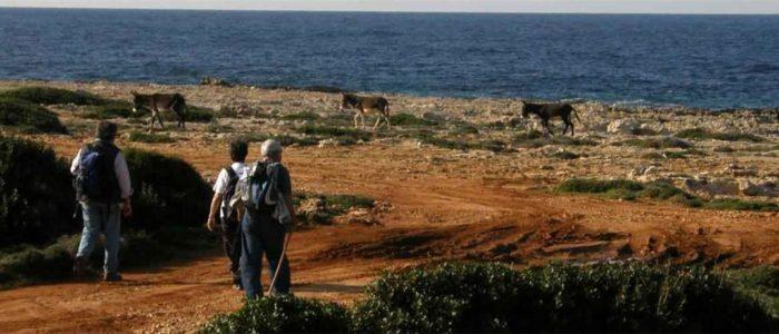 6 schöne Wanderwege in Nordzypern 4