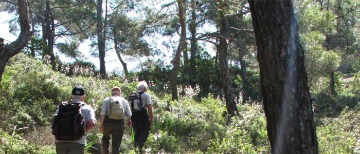 Nord Zypern Wanderurlaub 6